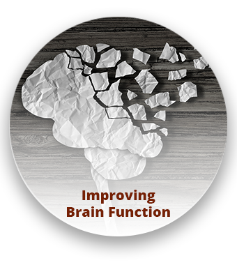 improve brain function los gatos ca
